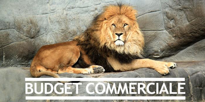 Budget Commerciale