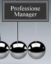 Renato Tonon - Professione Manager